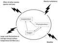 Oxygen-phyto-zooplankton dynamics affected by noise of different origins.webp