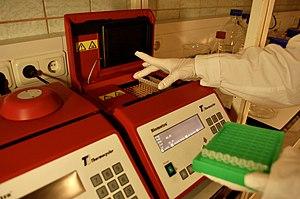 English: PCR masina tarvis on olemas stripid, ...