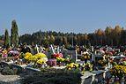 PL - Mielec - cmentarz komunalny - 2011-11-02 - 005.JPG
