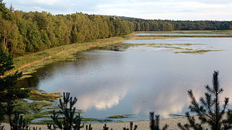 Roztocze National Park - Echo Lake near Zwierzyniec