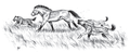 Palaeopopulations of Late Pleistocene Top Predators in Europe (2014) figure 9E.png