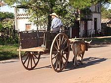 Carreta tradicional