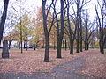 Park auf dem Gelände des ehemaligen Ostfriedhofes.jpg