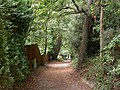 Parkstone, bridleway - geograph.org.uk - 1496326.jpg