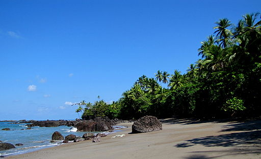 Beach at Corcovado National Park in Costa Rica