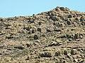 Parque Nacional Lihue Calel, La Pampa, Argentina . - panoramio (2).jpg