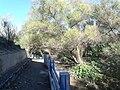 Parque Undido, Saltillo Coahuila - panoramio (13).jpg