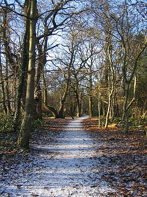 English: Path, Crackley Wood Temperatures for ...