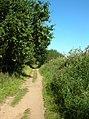 Path along Holkham Gap - geograph.org.uk - 544079.jpg
