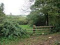 Path junction, near Mortimers Farm - geograph.org.uk - 1021912.jpg