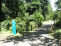 Path leading to the Pinetum at RHS Wisley - geograph.org.uk - 878356.jpg