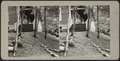 Path to entrance of a house, from Robert N. Dennis collection of stereoscopic views.png
