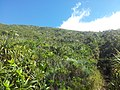 Paysage des hauts du Tremblet - panoramio.jpg