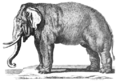 Pennant Thomas Hist of Quadrupeds 1793-Elephas.png