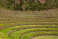 Peru - Cusco Sacred Valley & Incan Ruins 059 - Moray (7094842901).jpg