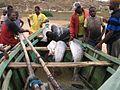 Pescadores Angola.JPG
