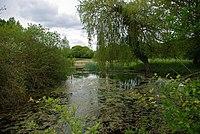 Phillis's Lake - geograph.org.uk - 1284770.jpg