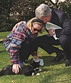 Photograph of President William Jefferson Clinton and First Lady Hillary Rodham Clinton Playing with Socks the Cat- 02-24-1997 (6461522455) (cropped1).jpg
