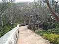 Phra Nakhon Khiri historical park 07.JPG