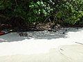 Phuket 2012 (8482727598).jpg