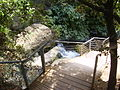 PikiWiki Israel 14676 Suspended Trail at Banias river.JPG
