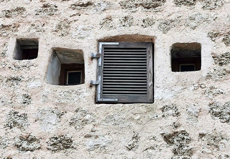 חלונות בבניין בשרונה