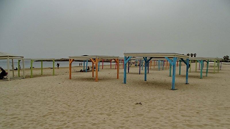 טנטורה חוף דור