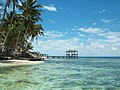 Pink Pearl Island-5.jpg