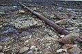 Pipe near Barns Ness Lighthouse - geograph.org.uk - 1607761.jpg
