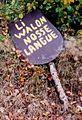 Plake li walon nosse langue.jpg