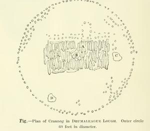 Drumaleague Lough - Illustrated plan of Drumaleague Crannog one.