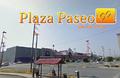 Plaza Paseo..png