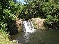 Pol an easa (Poulanassy) waterfall, Co.Kilkenny - geograph.org.uk - 213477.jpg