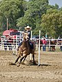 Pole bending Wyoming 15.jpg