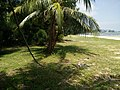 Port Dickson Beach next to the Bayu Beach Hotel 10.jpg