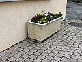 Pot Fleurs Place St Cyr St Cyr Menthon 3.jpg