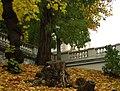 Praha, Vršovice, Gröbovka, podzim v Havlíčkových sadech.jpg