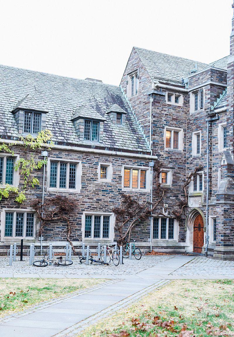 Princeton IV.jpg