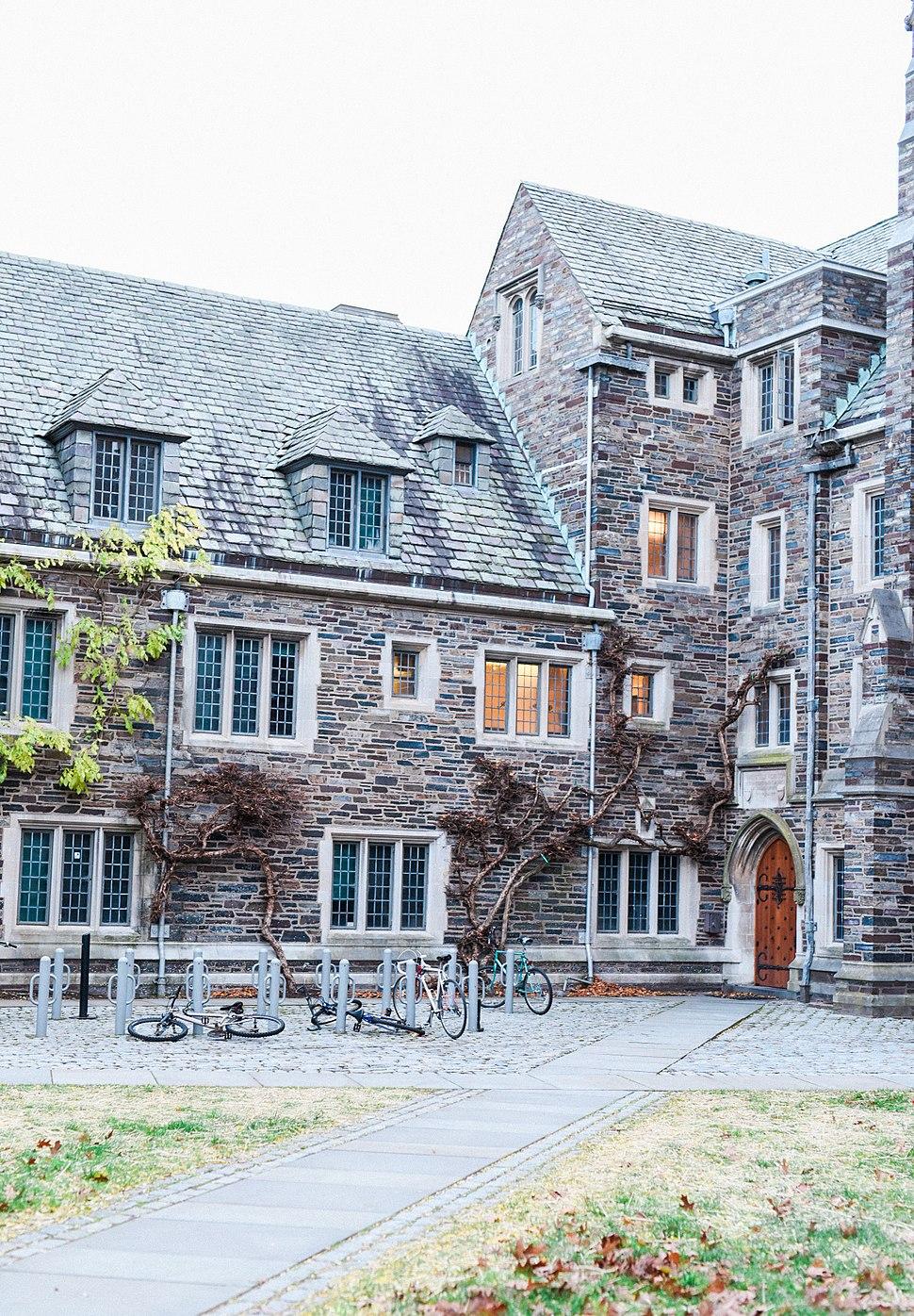 Princeton IV