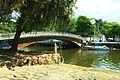 Principal ponte sobre o rio Perequê-Açu.JPG
