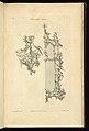 Print, Pier Glass Frame, 1755 (CH 18282683).jpg