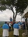 Processione Santa Maria dei Santi.jpg