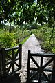 Brooklyn Botanic Garden Wikipedie