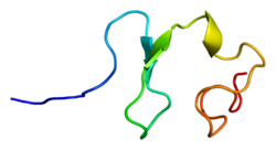 Protein RXFP1 PDB 2jm4.png
