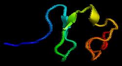 Protein RXFP1 PDB 2jm4.png