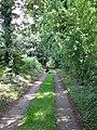 Public footpath to Claxton Corner - geograph.org.uk - 1433442.jpg