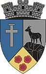 ROU BV Zarnesti CoA.jpg