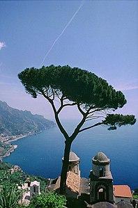 Costiera amalfitana - Wikipedia