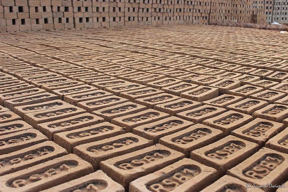 Raw Indian brick