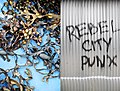 Rebel City Punx (3864890754).jpg